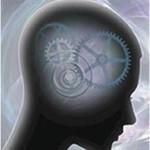 brain processing